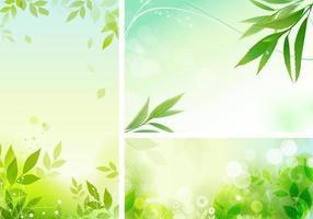 Pacote de papel de parede vetorial orgânico frondoso
