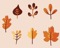coleção de folhas de outono. ilustração vetorial desenhada à mão vetor