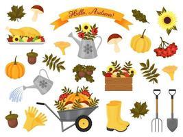 coleção de elementos de outono vetor