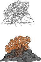 ilustração vetorial coral esboço doodle desenhado à mão vetor