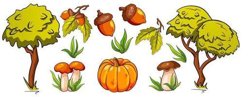 conjunto de outono. cogumelos, abóbora, bolotas, grama, folhas de carvalho, árvores. vetor