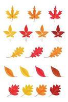folhas de outono ou ícones de folhagem de outono isolados no fundo branco vetor
