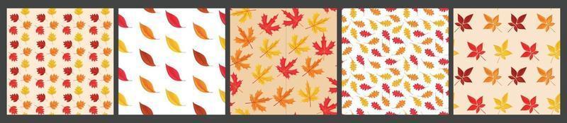 conjunto de vetores de 4 padrão sem emenda de fundo de folhas caindo
