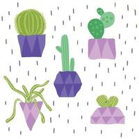 composição com diferentes cactos em vasos e rabiscos vetor