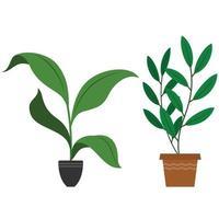 plantas de decoração de interiores vetor