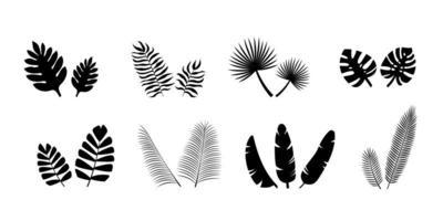 conjunto de silhuetas de folhas de palmeira negra vetor