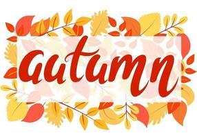 fundo brilhante de outono com folhas e vetor de letras de mão