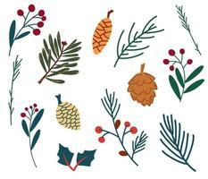 conjunto de cones e bagas de galhos de abeto. plantas de inverno. vetor