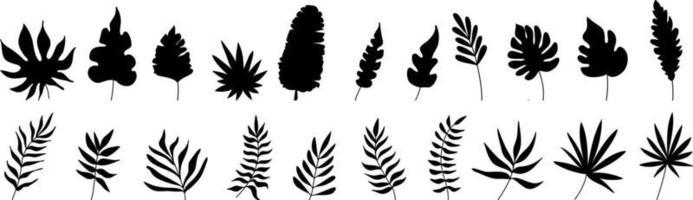 conjunto desenhado à mão de folhas tropicais em silhuetas. vetor