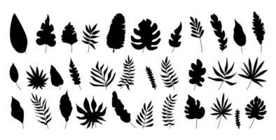 silhueta de ilustrações vetoriais de palmeiras e folhas. vetor