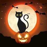 gato na abóbora de halloween na noite escura vetor