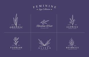 lindo logotipo feminino desenhado à mão para conjunto de coleção de marca vetor