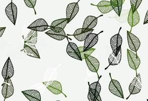 padrão de desenho de vetor verde claro.
