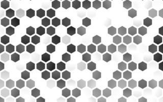 layout de vetor cinza claro com formas hexagonais.