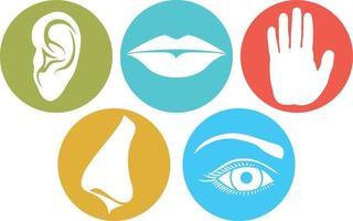 ícones planos de cinco sentidos vetor