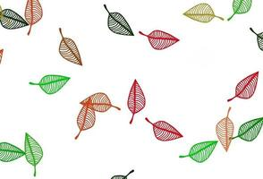 padrão de doodle de vetor verde e vermelho claro.