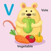 ilustração isolado animal alfabeto letra v-vole, vegetal vetor