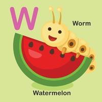 ilustração isolado animal alfabeto letra w-melancia, verme vetor