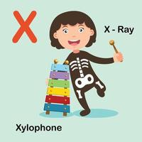 ilustração isolada raio x de letra do alfabeto, xilofone vetor