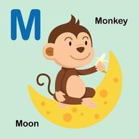 ilustração isolada letra do alfabeto m-lua, macaco vetor