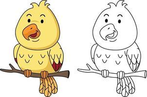 ilustração de livro de colorir educacional - pássaro vetor