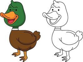 ilustração de livro de colorir educacional-pato vetor