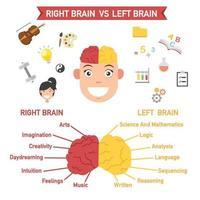 funções do cérebro esquerdo e direito, vetor
