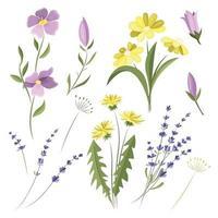 conjunto de vetores de flores silvestres. elementos de design. flores do prado.