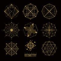 Formas de geometria sagrada vetor