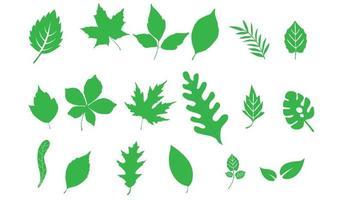 folhas conjunto verde. folha verde ecologia natureza elemento símbolo isolado vetor
