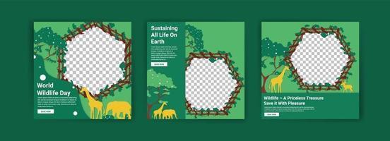 modelos de mídia social para o dia mundial da vida selvagem. vetor