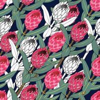 padrão sem emenda protea flores vintage abstraem base. vetor