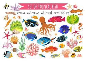conjunto de peixes corais e algas marinhas em estilo simples vetor