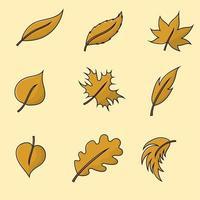 folhas secas ilustração vetorial isolada para design de outono e verão vetor