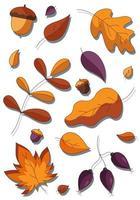 conjunto de desenhos animados de plantas florestais botânicas de outono caídas. vetor
