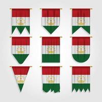 bandeira do tajiquistão em diferentes formas vetor