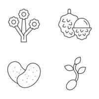 frutas e vegetais conjuntos de ícones de linha fina vetor