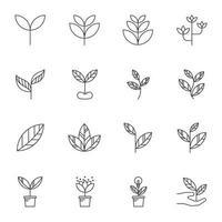 ícones de linha de folha, ilustração vetorial vetor