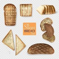 conjunto de pão transparente diferente vetor