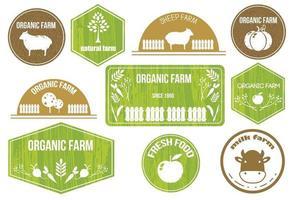 conjunto retrô de rótulos de alimentos saudáveis, orgânicos, sem glúten, ecológicos. vetor