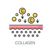 colágeno ícone de cor rgb vetor