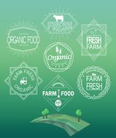 Logotipos e emblemas frescos da exploração agrícola do vetor. vetor