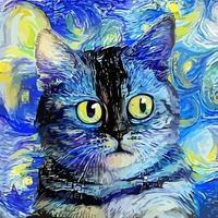 pintura de retrato de gato malhado de noite estrelada em estilo impressionista vetor