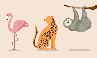 conjunto de animais exóticos tropicais vetor