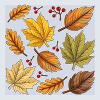 coleção de folhas de outono desenhada à mão, folhas coloridas de outono caindo vetor