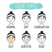 tipos básicos de pele normal, seca, mista, oleosa, sensível e acneica. vetor