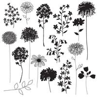 silhuetas botânicas vetor