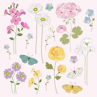 mão desenhada flores e borboletas clipart vetor