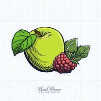 Mão desenhada frutas e vegetais ilustração
