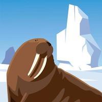 morsa descansando personagem animal no pólo norte de iceberg vetor
